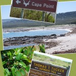 Discovering Cape Town – Cape Point Meander