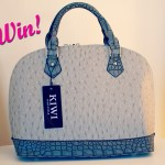 Win a Stylish Lushberry Handbag