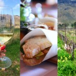 What Makes Avondale A Top Biodynamic Wine Farm