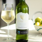 Top Wines for Summer