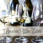 Wine Tasting at Lanzerac Wine Estate