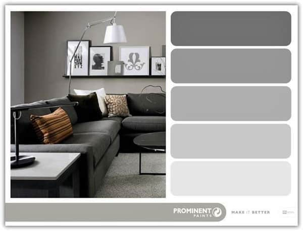 Shades of grey with prominent paints inspired living sa Shades of grey interior paint