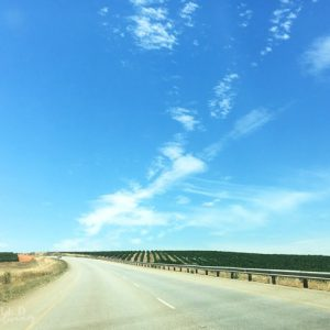 Top Tips for Safe Road Trips South Africa