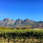 Mother's Day in Franschhoek Top Things To Do