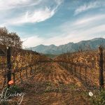 Franschhoek Winter Escape 24 Hour Getaway