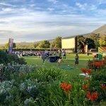 Galileo Open Air Cinema Summer 2019/2020